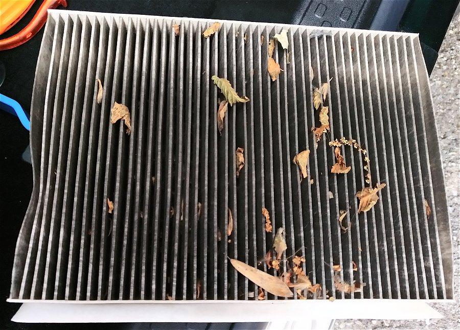 filtro pieno di foglie